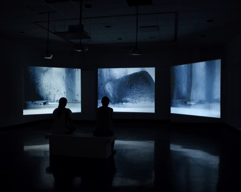 Defrost, Exposition soloÉléments, Espace F, Matane (Québec), 2015.